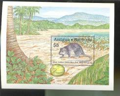 ANTIGUA & BARBUDA   1237  MINT NEVER HINGED SOUVENIR SHEET OF ANIMALS ; WEST INDIEN GIANT RICE RAT - Unclassified