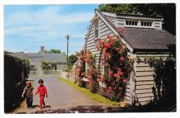 Cpsm: ETATS UNIS - USA - NANTUCKET ISLAND , Mass - Narrow Lanes Beautiful Roses. 1969  N° 1582 - Nantucket