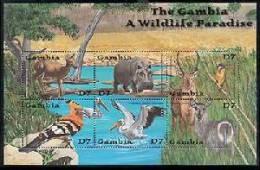 MINT NEVER HINGED MINI SHEET OF WILDLIFE & ANIMALS  ; BIRDS  ( GAMBIA   2596 - Non Classés