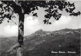 Lazio-roma-olevano Romano Veduta Panorama Particolare Anni 50 - Italia