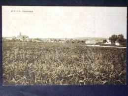 SARDEGNA -CAGLIARI -SUELLI -F.P. LOTTO N°498 - Cagliari