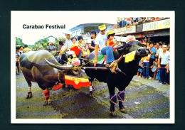 PHILIPPINES  -  Pulilan  Carabao Festival  Unused Postcard - Philippines
