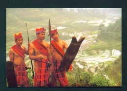 PHILIPPINES  -  Igorot Tribesmen  Unused Postcard - Philippines