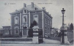 Hannut - Château Du Notaire Ghion (SBP) - Hannut