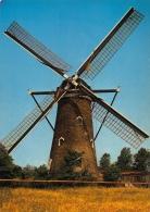Windmolen Molen   Nieuwvliet        A 447 - Moulins à Vent