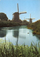Windmolen Molen   Kinderdijk        A 451 - Moulins à Vent