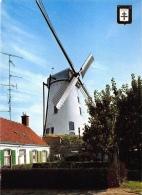 Windmolen Molen   Roeselare       A 452 - Moulins à Vent