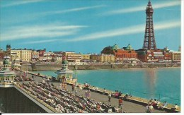 BLACKPOOL :north Pier And Tower - Blackpool