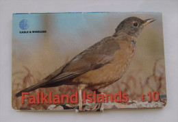 Falkland Islands - Large Foldout Prepaid With Town Map Inside - Falkland Islands