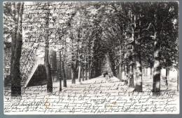 1343 - Ohne Porto - Alte Ansichtskarte Weissenfels Weißenfels  Gel 1903 - Weissenfels