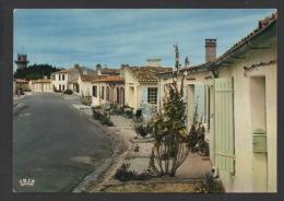 DF / 17 CHARENTE  MARITIME / ILE D'AIX / LA RUE MARENGO AVEC SES ROSES TRÈMIÈRES - Other Municipalities