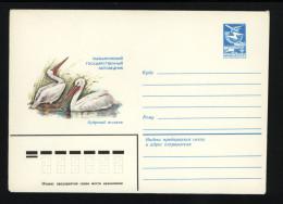 USSR 1983 Postal Cover Bird Dalmatian Pelican (123) - Pelicans