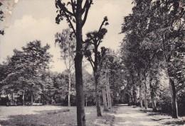 HEVERLEE : Zicht Op De Tuin - Oud-Heverlee
