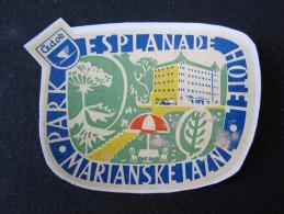 HOTEL INN ESPLANADE MARIANSKE LAZNE CSSR CZECH REPUBLIC CZECHOSLOVAKIA LUGGAGE LABEL ETIQUETTE AUFKLEBER DECAL STICKER - Hotel Labels