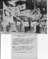 Indochine Saïgon Défilé Des Nationalistes Vietnamiens Célébrant L'indépendance De Leur Pays 1 Photo - War, Military