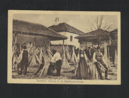 Serbia PPC Peasants Beating Flax 1917 - Serbia
