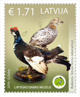 Latvian Natural History Museum Of The Unique Exhibits - Aberrant Birds, 2016  - MNH  STAMP - Letland
