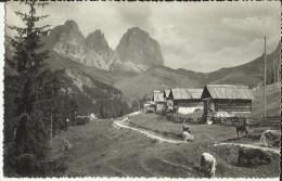 Dolomiti Di Fassa -- Baite Con Il Gruppo Del Sassolungo.   (2 Scans) - Altre Città