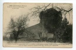Terrasson Ruines Du Château De Montmège - Autres Communes