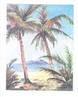 Carte Postale : Palmier. (Voir Commentaires) - Bäume