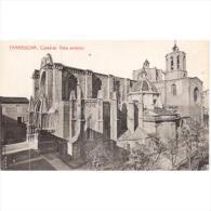 TGNTPA2429-LFT6388.Tarjea Postal De TARRAGONA.Arboles,jardines Y CATEDRAL DE TARRAGONA - Tarragona
