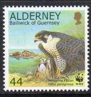 ALDERNEY GB - 2000 44p PEREGRINE FALCON & PREY STAMP FINE MNH **  SG A144 - Eagles & Birds Of Prey