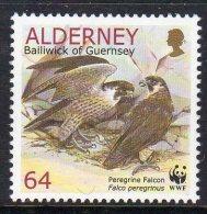 ALDERNEY GB - 2000 64p YOUNG PEREGRINE FALCONS STAMP FINE MNH **  SG A145 - Eagles & Birds Of Prey