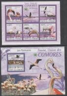 COMORES, 2009, MNH, BIRDS, FALMINGOES, SHEETLET+ S/SHEET - Flamingo