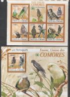 COMORES, 2009, MNH, BIRDS,PARROTS, SHEETLET+ S/SHEET - Parrots