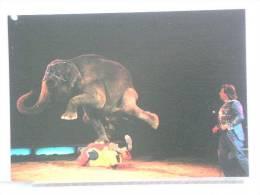 CIRQUE KNIE - L´ELEPHANT EQUILIBRISTE - GENEVE, 11/9/86 - 300 EX. - ETAT NEUF - Cirque