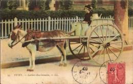 Cpa 03 Vichy Laitière Bourbonnaise Ane Et Charette Pour Le Transport Du Lait - Vichy