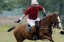 B03-30  ^^  Cheval  Horse Pferd Caballo Polo  ( Postal Stationery , Articles Postaux ) - Reitsport