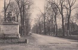Cp , 60 , COMPIÈGNE , L'Avenue Du Rond-Royal , Vers La Forêt - Compiegne