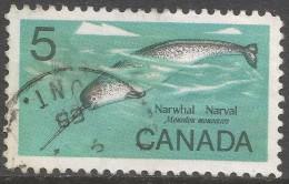 Canada. 1968 Wildlife. Narwhal. 5c Used. SG 622 - 1952-.... Reign Of Elizabeth II