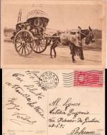 1934 Bella Cartolina CARRETTIERI A VINO Con Anno Santo 20c Isolato 09 - 1900-44 Vittorio Emanuele III