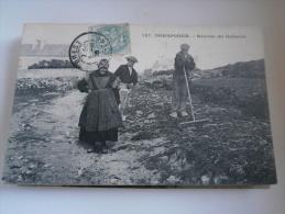 PORSPODER - 167 - RECOLTE DU GOEMON - DE 1905 - CARTE ENVOYEE PAR UN MECANICIEN DU JAUREGUIBERRY A BREST - CARTE TBON ET - Sin Clasificación