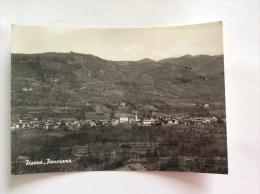 PISANO - Panorama - Cartolina FG BN V 1963 - Italia