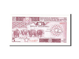 Somalie, 5 Shilin = 5 Shillings, 1987, Undated, KM:31c, SPL - Somalia