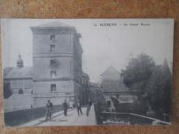 ALENCON . LE GRAND MOULIN - Alencon