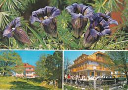 Yugoslavia--1979--Lisca---Sevnica-a, Freyming, Francia - Yugoslavia