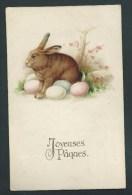 Joyeuses Pâques.  Gros Lapin Couvant Des Oeufs. Litho Amag.  Dos Visible. - Pâques