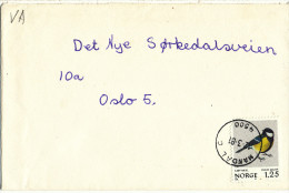 Norway Cover With Single Franked BIRD Stamp Mandal 12-3-1981 - Norvège