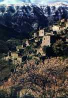 84 BRANTES Dans Le Fond Le Mont Ventoux Sous La  Neige Alt 1912m - Francia
