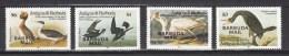 Barbuda Mail 1985,4V,complete Set,Audubon,birds,vogels,vögel,oiseaux,pajaros,uccelli,aves,MNH/Postfris(A2314) - Vogels