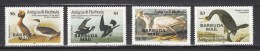 Barbuda Mail 1985,4V,complete Set,Audubon,birds,vogels,vögel,oiseaux,pajaros,uccelli,aves,MNH/Postfris(A2314) - Oiseaux