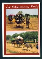 CAMEROON  -  Local Transport (Donkeys)  Unused Postcard - Cameroon
