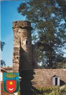 64---LESCAR---la Tour Du Château ---voir 2 Scans - Lescar