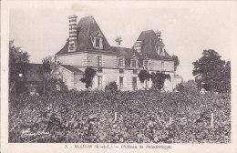 Ax - Cpa BLAISON - Château De Bois Brinçon - France