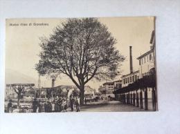 Storico Olmo Di GRAVEDONA, Animata - Cartolina FP V 1919 - Altre Città