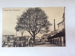 Storico Olmo Di GRAVEDONA, Animata - Cartolina FP V 1919 - Autres Villes